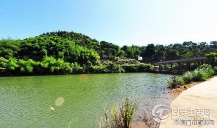 青山隐隐曲水绕:一组图带你走进同安小坪森林公园