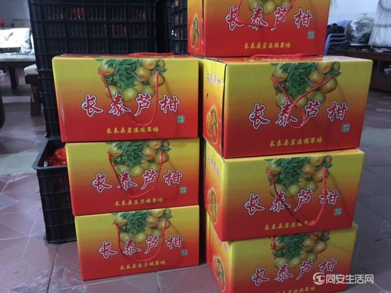 芦柑礼盒装2