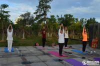 蘇頌公園公益瑜伽晨練美照來襲