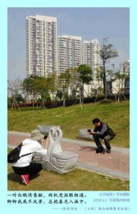 禹州新城白鹅雕像竞拍图