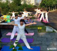 同安区瑜伽运动协会公益瑜伽