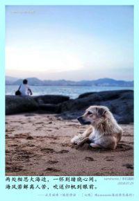 [七絕]觀sunsnunie海邊情思圖感作
